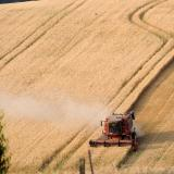 Minister of agriculture: Harvest campaign ends up with biggest crop ever reported by Bulgaria