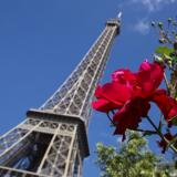 'Come, spend in Paris', French PM urges tourists