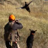 Bulgaria deputy agriculture minister opens hunting season in Veliko Tarnovo district (ROUNDUP)