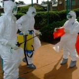 Ebola-hit west Africa launches emergency battle plan