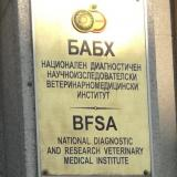 BFSA complains to prosecutors over obstruction in Bolyarovo