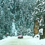 25 cm of snow and fallen trees impede the traffic in The Rhodopes
