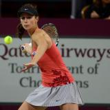 Tennis: Tsvetana Pironkova goes to the quarter finals at the French Open