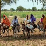 Gunmen on camels wound 6 in Darfur camp attack