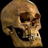 Donated skulls in Washington state lead to more human remains