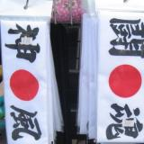 Japan: Sightseeing tour with samurai and ninja fights