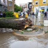 Picture: Снимки: Забелязано в Плевен/FacebookPartial emergency in Pleven after strong storm yesterday