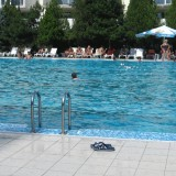 Iraqi refugee 'raped 10-year-old boy at Austrian swimming pool'