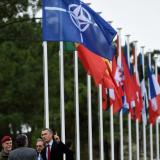 Nato and Trump: What future for the Atlantic alliance?
