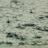 More showers with thunder and hail today, maximum temperatures 23-28°C