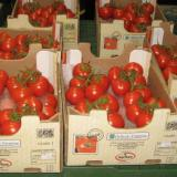 Macedonia: Back us for EU, and we'll send you fresh tomatoes