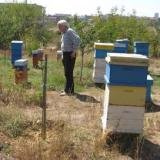 14th International Honey Festival officially opened in Bulgaria's Nesebar