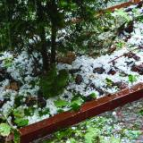 Hailstorm, strong wind in NW Bulgaria