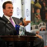 Schwarzenegger throws weight behind Ukrainian protesters
