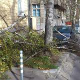 Situation in Vratsa region normalising after hurricane winds, damage will be examined