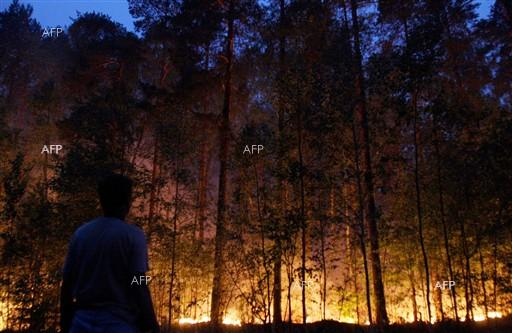 Reuters: Portugal asks for help from Europe to fight fires