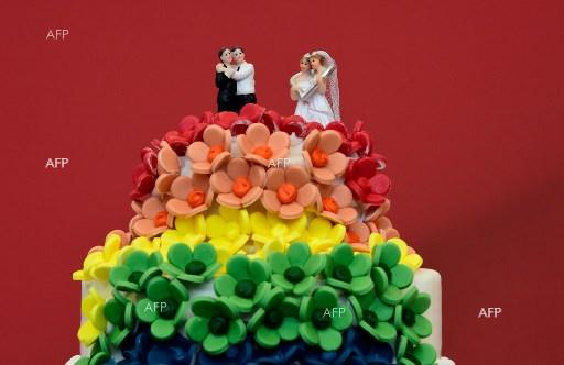 Germany Approves Gay Marriage: Next Stop Constitutional Court?