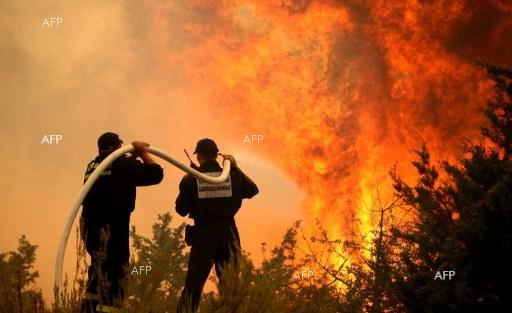 AFP: More than 1,000 firefighters battle Portugal wildfires
