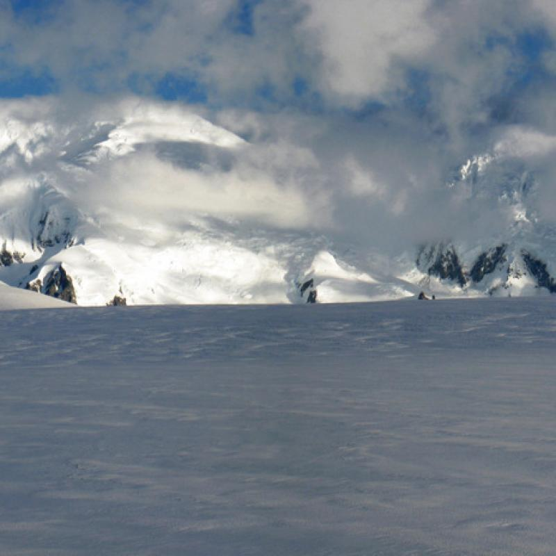 Antarctica: A historic opportunity for the EU to act for the planet