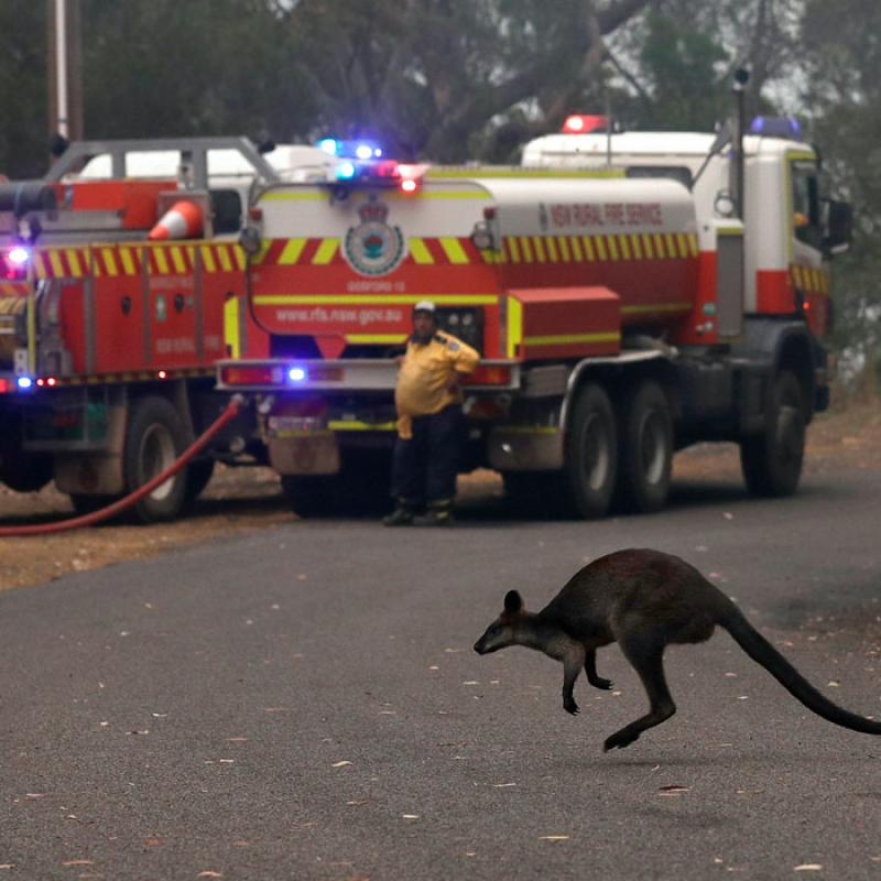 State of emergency declared in Australia over raging wildfires. December 11, 2019