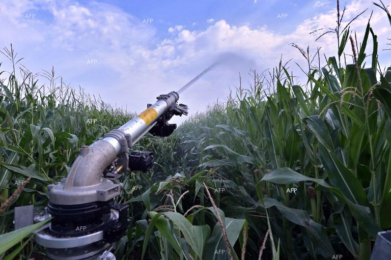 EC requests Bulgaria and Slovakia to tackle water pollution caused by nitrates